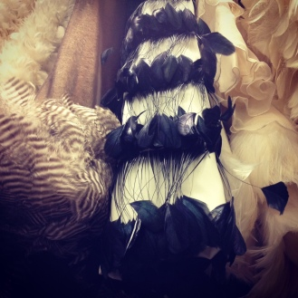 Feathered fashion.
